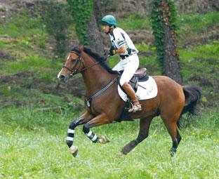 全日本総合馬術大会選手権2位の細野茂之選手とイペカ号(八王子乗馬クラブ)